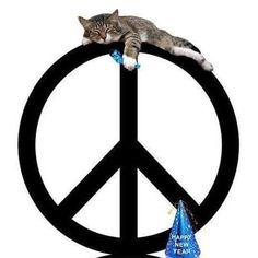 peace cat.jpg